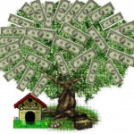 Money Tree Success Photo
